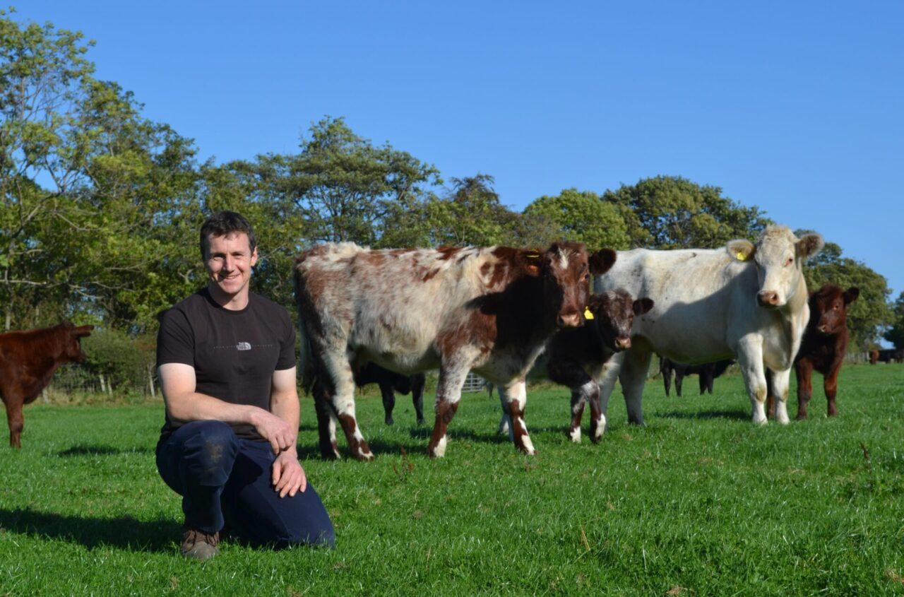 Simon Hare Organic Beef